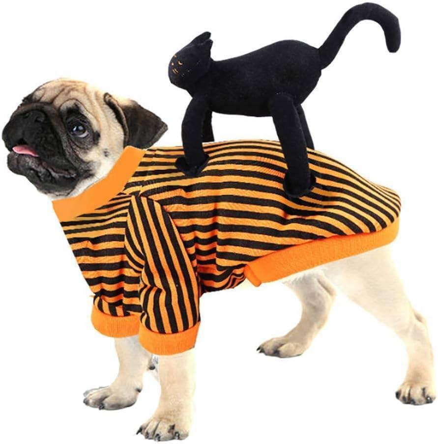 CUIZC Ropa De Perro Gato Negro Montando Perro Forma Halloween Novedad Divertida Ropa para Mascotas Otoño E Invierno