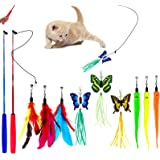 11 PCS Retractable Cat Feather Toy, Interactive Cat Toys Wand with 2 Poles & 9 Attachments Worm Feathers, Cat Feather Wand To