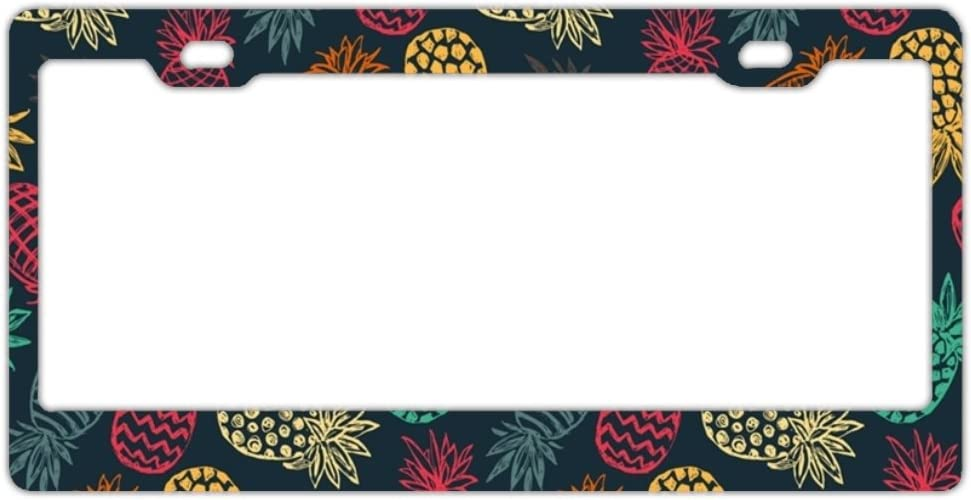 HHAT Purple Phish License Plate Frame Theft-Proof Frames Stainless Steel Board Frames