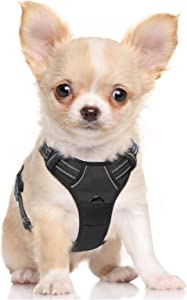 Rabbitgoo Dog Harness