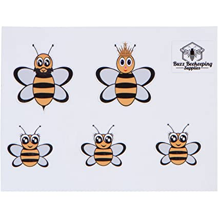 Cute Bumble Bee set of 2 Vinyl Wall Home Decor Decal Quote Inspiration Adorable