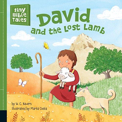 David and the Lost Lamb (Tiny Bible (Lost Lamb)
