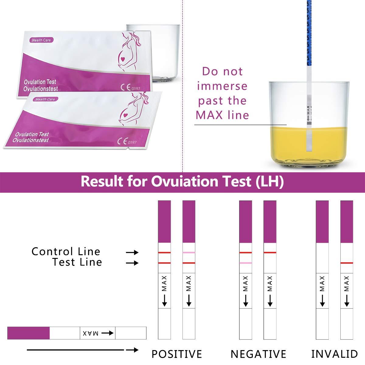 Ovulation Test Kit, 50 (LH) Ovulation Tests and 20 (HCG) Pregnancy Test  Strips Kit - Ovulation Predictor Kits (50 LH + 20 HCG Tests)