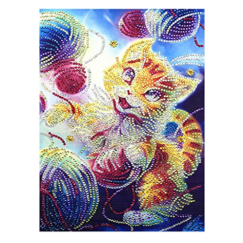 DIY 5D Diamond Painting Kits for Adults, Cross Stitch Crystal Embroidery Rhinestones Craft Diamond Painting by Number Kits -