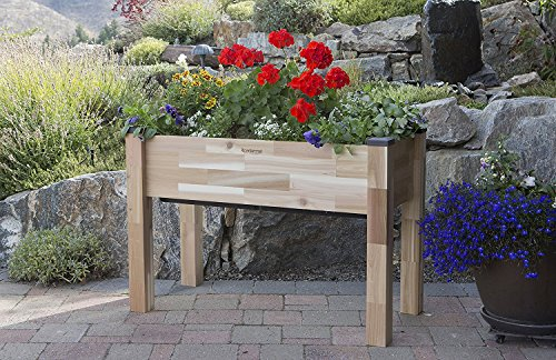 CedarCraft Self-Watering Elevated Cedar Planter (23