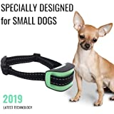 Specially Designed - Small Dog No Bark Collar - Anti Barking Vibration Control Device for Small Dogs - Puppy Training Deterrent - No Shock - 2019 Model - Fast Results! Mint
