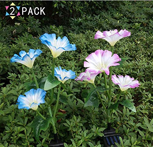 Outdoor Garden 2 Pack Artificial Solar Stake Petunia Flower LED Lights with 8 Flowers(Blue and Purple), Multic-Color Changing Solar-Powered Morning Glory LED Lights for Backyard, Lawn Decorations ()