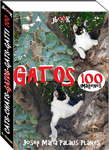 Gatos (100 imágenes) (Spanish Edition) by [PLANES, JOSEP MARIA PALAUS