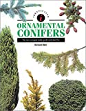 Identifying Guide to Ornamental Conifers, Richard Bird, 0785803246