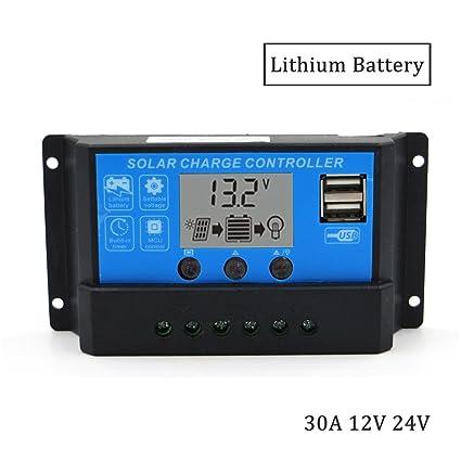 Amazon.com: DPJ 10A 20A 30A 12V/24V Pantalla LCD Cargador ...