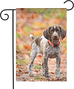 German Shorthaired Pointer Garden Flags Home Indoor & Outdoor Holiday Decorations,Waterproof Polyester Yard Decorative for Game Family Party Banner