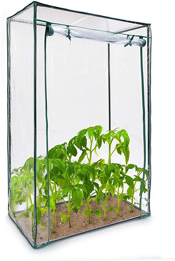 Invernadero de jardín, balcón, terraza, invernadero, para tomates ...