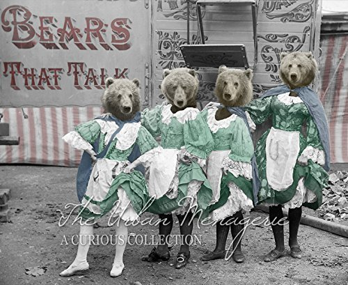 [Anthropomorphic Portrait, Circus Bears Art Print, Multiple Sizes Available, Unframed] (Inanimate Object Costume)