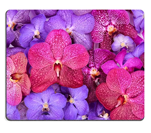 msd-natural-rubber-gaming-mousepad-group-of-beautiful-blooming-orchid-image-29979327