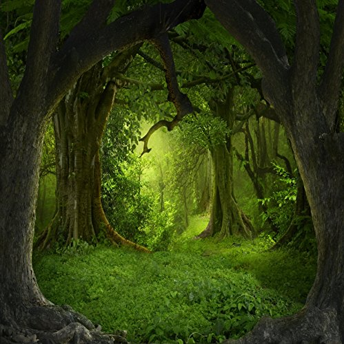 Enchanted Forest Baby Shower - OFILA Fairy Forest Backdrop 5x5ft Magic Trees Wonderland Girls Princess Portraits Kids Enchanted Theme Birthday Party Background Fantasy Baby Shower Photos Preschool Play Toddlers Shoots Video Props