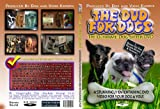 THE DVD FOR DOGS: The Ultimate Dog Sitter DVD