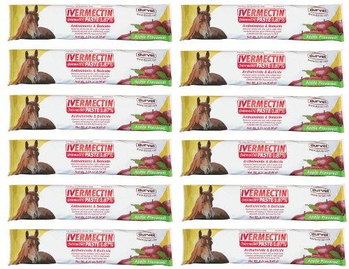 (Durvet 12-Pack Ivermectin Dewormer Paste for Horses)
