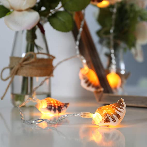 Cadena de luz de conchas, 10 leds blanco cálido, conchas de verdad, 1,5 m, de luces festivas.: Amazon.es: Hogar