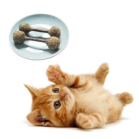 2 unidades de palos de gato Matatabi natural (plata) para gatos y gatos para masticar varillas ...