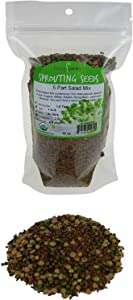 1 Lb - Handy Pantry 5 Part Salad Sprout Mix - Organic Non-GMO Mixed Seeds - Organic Broccoli Sprouting Seeds, Radish Sprout Seeds, Alfalfa Sprout Seeds, Lentil Seeds, and Mung Bean Seeds for Sprouting
