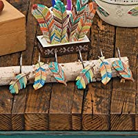 Black Forest Decor Decorative Southwestern Rustic Shower Curtain Hooks