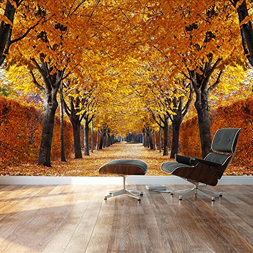 Yellow leaved trees line autumn lane Landscape Wall Mural
