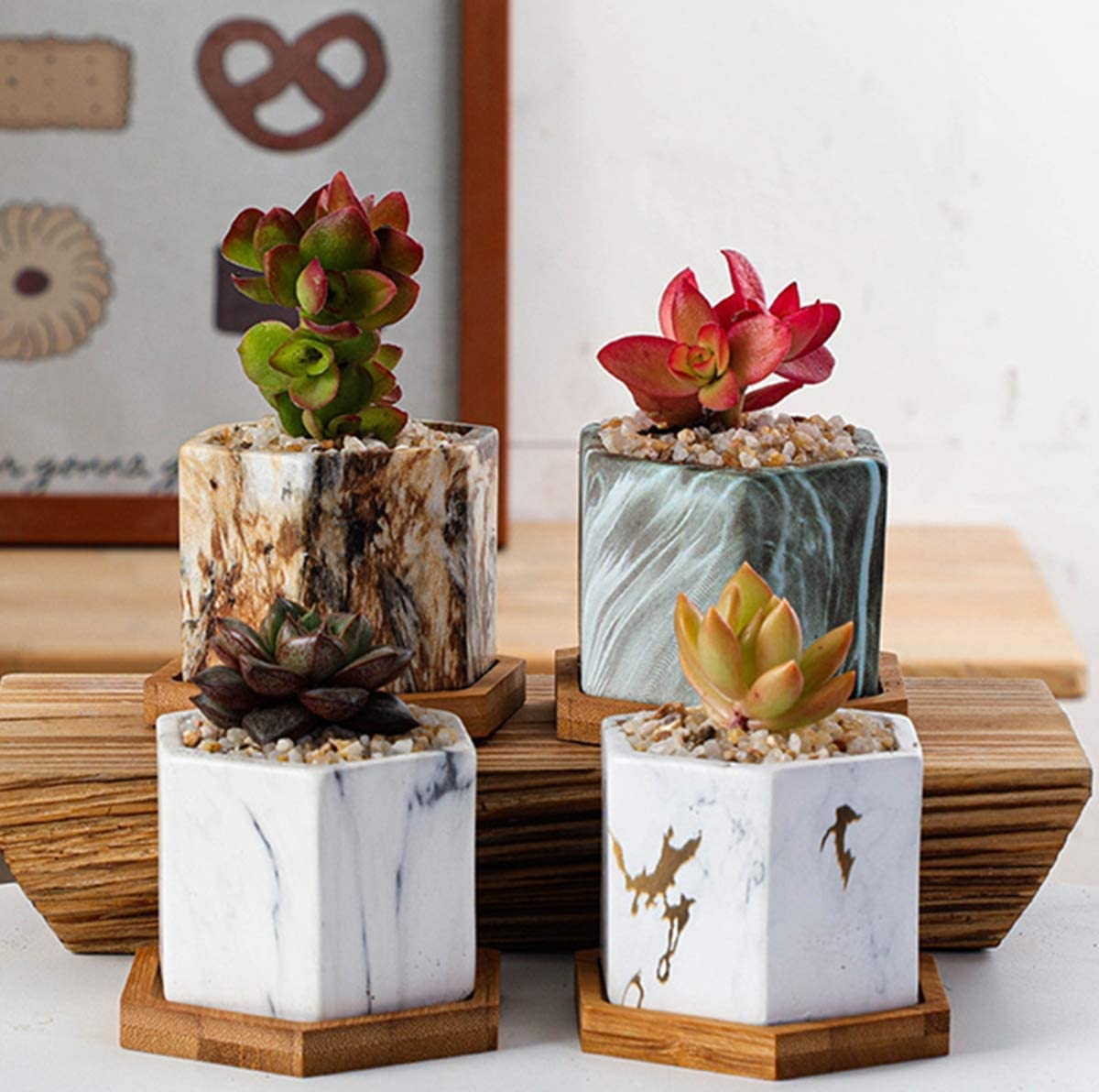 4 Sets of Modern Style Mini Marble Pattern Ceramic Flower Pots Succulent Cactus Bonsai Planting Pot Container (Marble Pattern Container) for Garden, Balcony, Office, Birthday (Rhomboid Ceramics)
