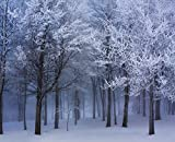 JP London MD4046PS uStrip Peel and Stick Frozen Winter Forest Trees Removable Wallpaper Mural, 10.5 by 8.5-Feet