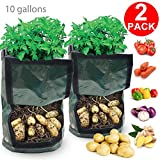 Garden Grow Bags, 2 Pack 10 Gallon Potato Grow Bag Vegetables Planter Bag with Access Flap Handles Aeration PE Tub Pouch Pot Heavy Duty Soil Container for Planting Potato Carrot Onion Taro Radish