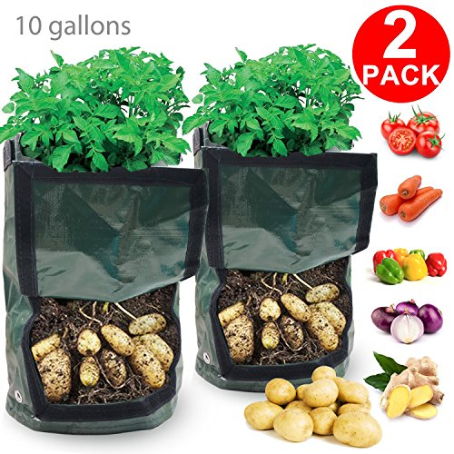 Garden Grow Bags, 2 Pack 10 Gallon Potato Grow Bag Vegetables Planter Bag with Access Flap Handles Aeration PE Tub Pouch Pot Heavy Duty Soil Container for Planting Potato Carrot Onion Taro Radish by Sisyphe