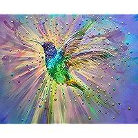 Pintura digital Paint by Number Kit bird Diy