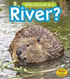 What Can Live in the River? (Read and Learn: What Can Live There?) by John-Paul Wilkins (2014-07-06)