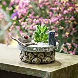 buy Cute Antique Finished Stone Mill and Cat Nice Day Tabletop Miniature Window Sill Resin Flower Cactus Succulent Pot Display Plants Planter Home Garden Decor Mother Day Gift now, new 2018-2017 bestseller, review and Photo, best price $15.00