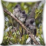 HARLAN Custom Zippered Throw Pillow 60x60cm(24x24inch) Super Large Size 900g(1.98lb) (Twin sides Print)- siobhan-tailed birds branches Leaning Cushion