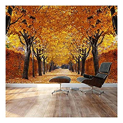 Yellow leaved Trees line Autumn Lane - Landscape - Wall Mural, Removable Sticker, Home Decor - 100x144 inches