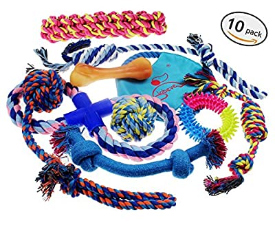 Lobeve Dog Toys 10 Pack Gift Set, Variety Pet Dogs Toy Set for Medium to Small Doggie