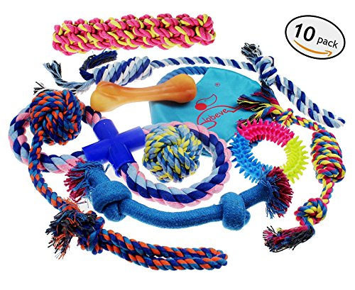 [Lobeve Dog Toys 10 Pack Gift Set, Variety Pet Dogs Toy Set for Medium to Small Doggie] (Need Gift Basket Supply)