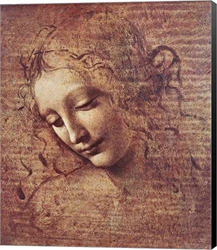 Tousled Leonardo Art Picture Wrapped product image