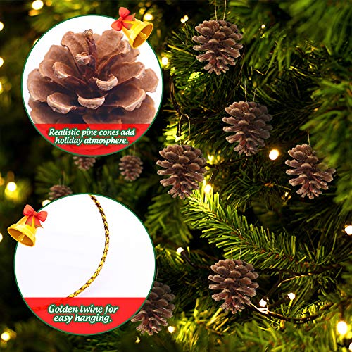 Johouse Pine Cones and Pine Branches, 40PCS Artificial Plants, Fall Winter Holiday Home Decor Vase Filler, DIY Accessories for Garland Wreath Christmas Embellishing