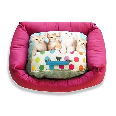 DAGOSTINO HOME - Cama cuna tridimensional para mascotas MIU MIU FAMILY - L - 50X60