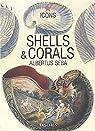 Shells & Corals - Albertus Seba par Seba