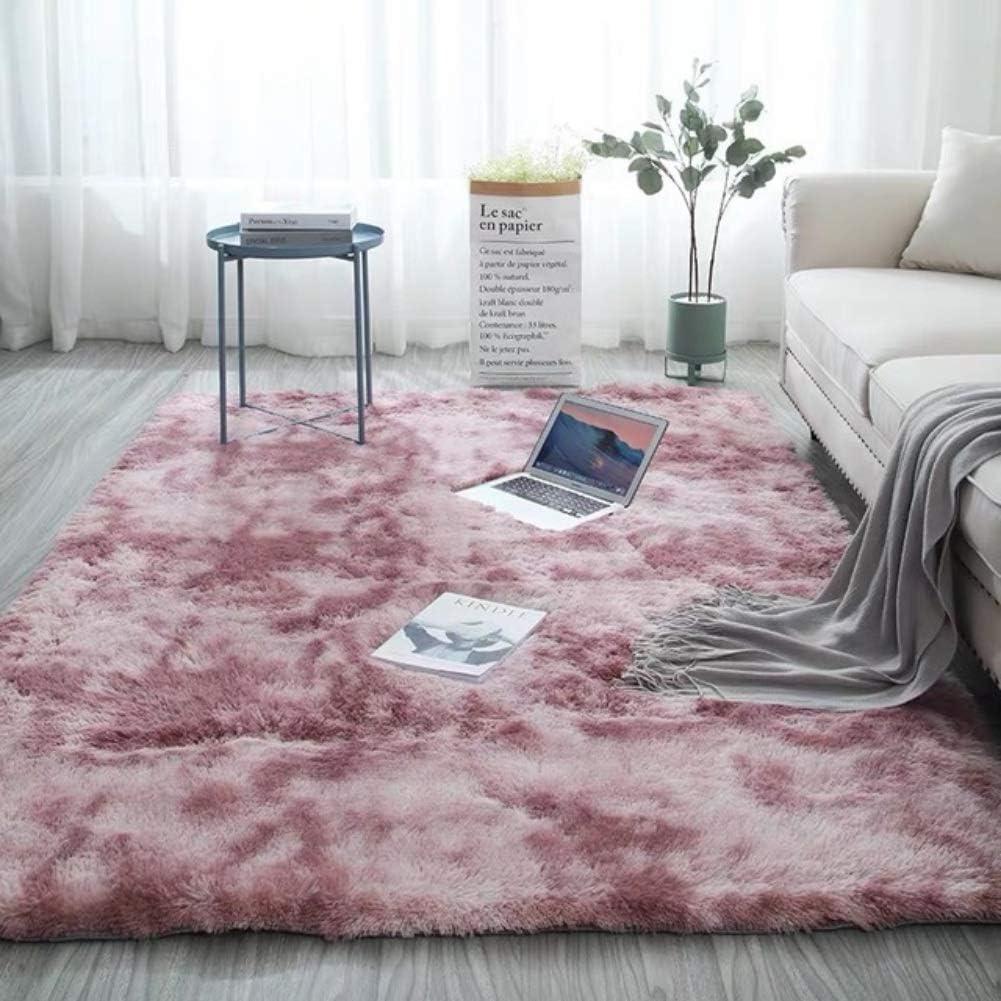 en Diff/érentes Tailles Et Coloris Dimension: 40 x 60 cm Tapis de Salon de Style Moderne R/ésistant /à la Tache Couleur: Rose Zwgmu Tapis Salon Shaggy