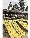 Robert Harding 10x8 Print of Krupuk (Kroepoek) drying in the sun, Bukittinggi, West Sumatra, Indonesia (12169346)