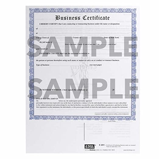 Amazon.com : New York Business Certificate (DBA) Form X201 (8.5 X ...