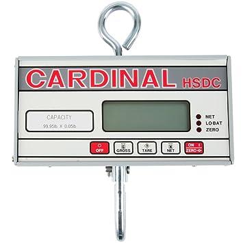 Cardinal Detecto hsdc-100 100 lb. Digital para colgar escala, Legal Para El Comercio: Amazon.es: Juguetes y juegos