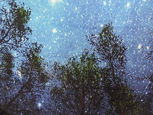 Forest Starry Tapestry Wall Tapestry Wall Hanging Galaxy Tapestry Hippie Milky Way Tapestry Sky Tapestry Tree Tapestry Night Sky Tapestry Mandala Bohemian Tapestry for  Bedroom Dorm Decor by Sunm boutique (Image #5)