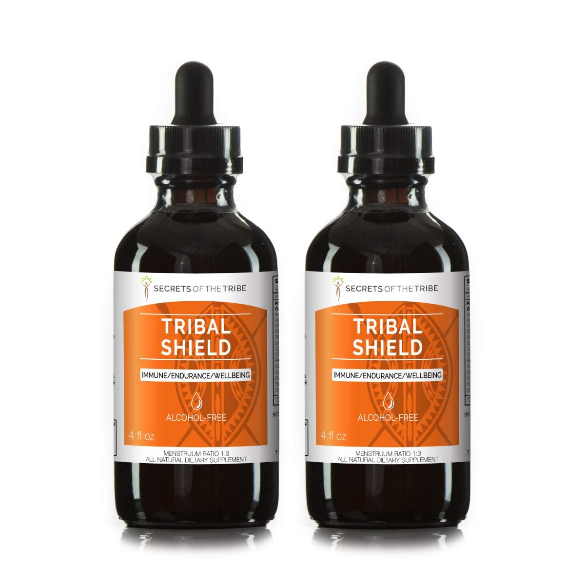 Tribal Shield Alcohol-Free, Glycerite Astragalus, Echinacea, Maca, Calendula, Reishi, Schisandra, Elderberry. Tincture, Herbal Extract Immune/Endurance/Wellbeing (2x4 FL OZ)