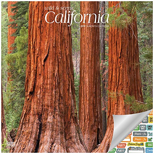 California Wild & Scenic Calendar 2019 Set - Deluxe 2019 California Wild & Scenic Wall Calendar with Over 100 Calendar Stickers (California Gifts, Office Supplies)