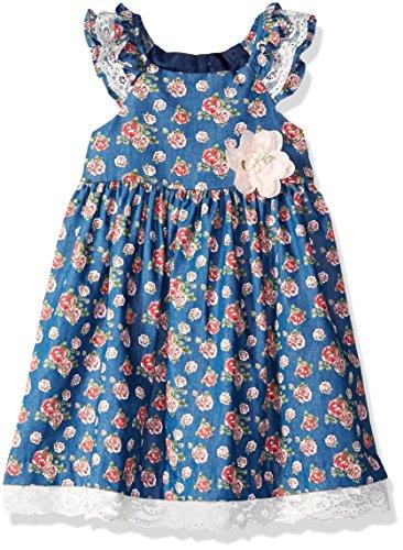 Bonnie Jean Girls' Toddler Chambray Dress, Rose Print, 4T