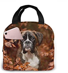 antspuent Boxer Dogs Autumn Lunch Bag for Women Girls Kids Insulated Picnic Pouch Thermal Cooler Tote Bento Large Meal Prep Cute Bag Big Leakproof Soft Bags for Lunch Box, Camping, Travel, Fishing